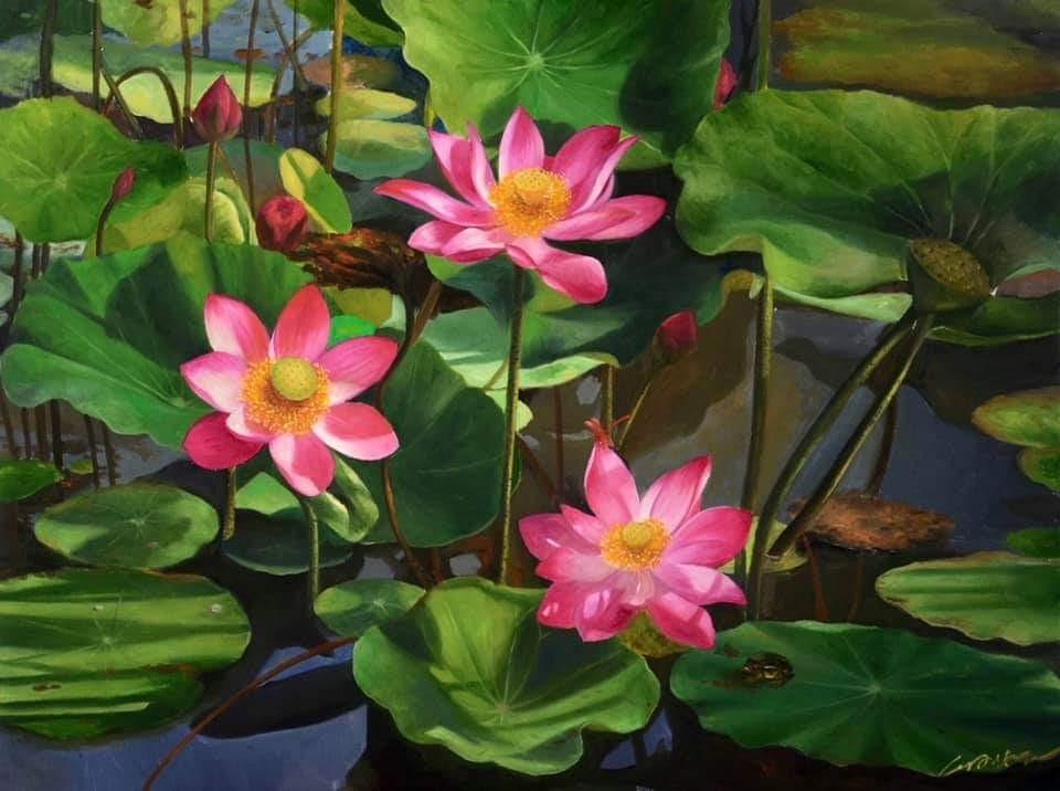 Early Lotus